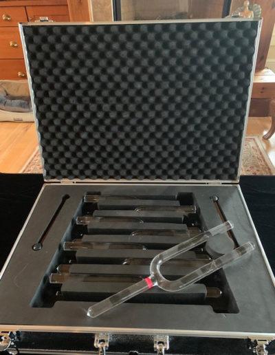 crystal tuning forks case