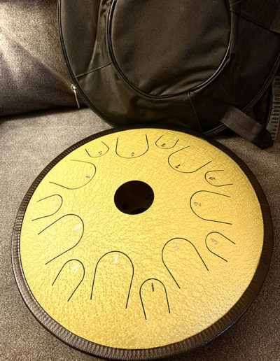 14 Inch 14 Tone Steel Butterfly Drum
